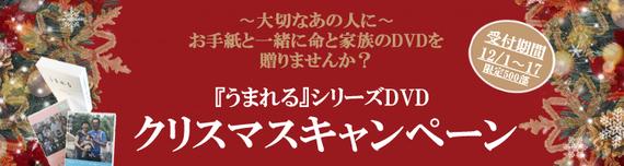 DVDpagemain-xmas.jpg