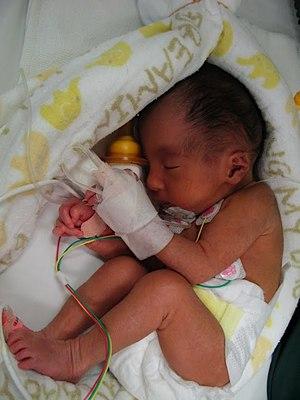 tora-birth.JPG