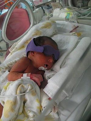 tora-birth2.JPG